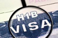 सबसे ज्यादा खारिज हुए भारतीय IT कंपनियों के H-1B वीजा बढ़ाने के आवेदन